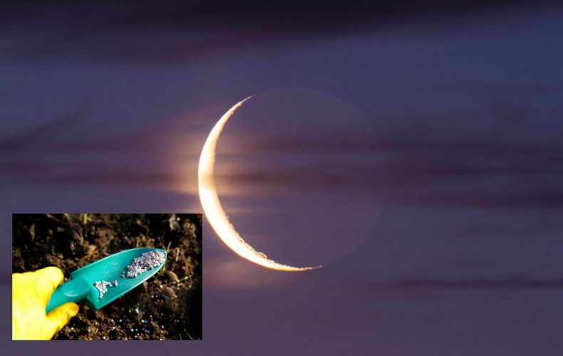 Подкормка при убывающей луне
