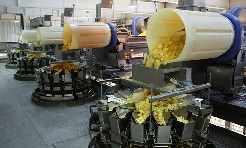 Как картофель сорта Леди Розетта помогла семье из Гуджарата заработать почти 35 млн долларов