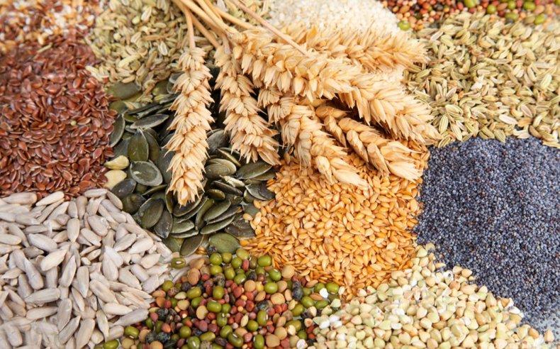 Обзор зерновых и масличных культур США