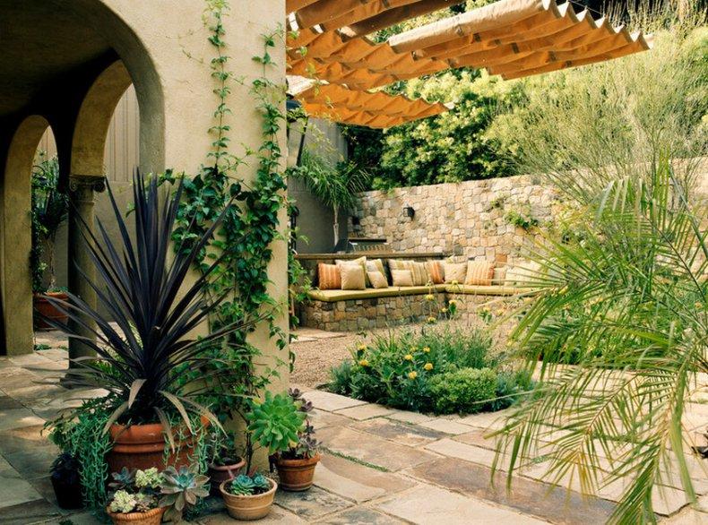 Растения в средиземноморском стиле