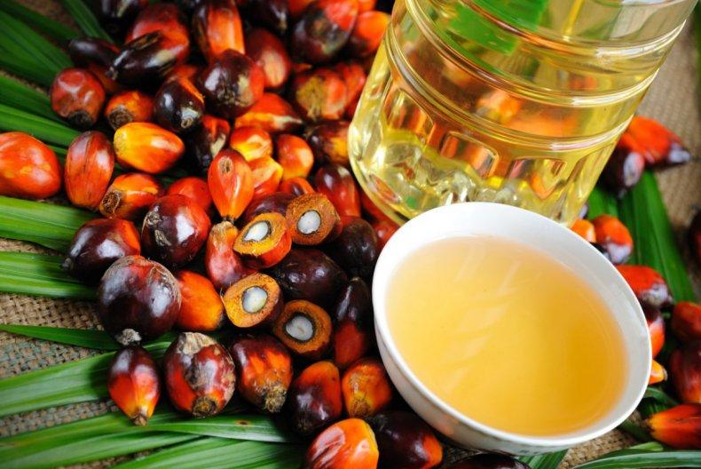 Торги пальмовым маслом заканчиваются ростом экспорта из-за того, что Индия ослабляет ограничения