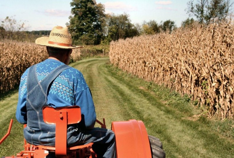 Проблемы, с которыми сталкиваются американские фермеры