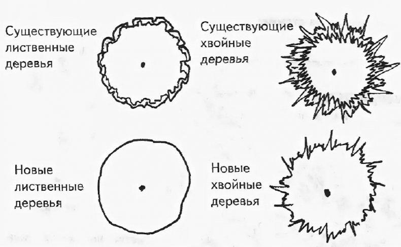 Условные обозначения деревьев