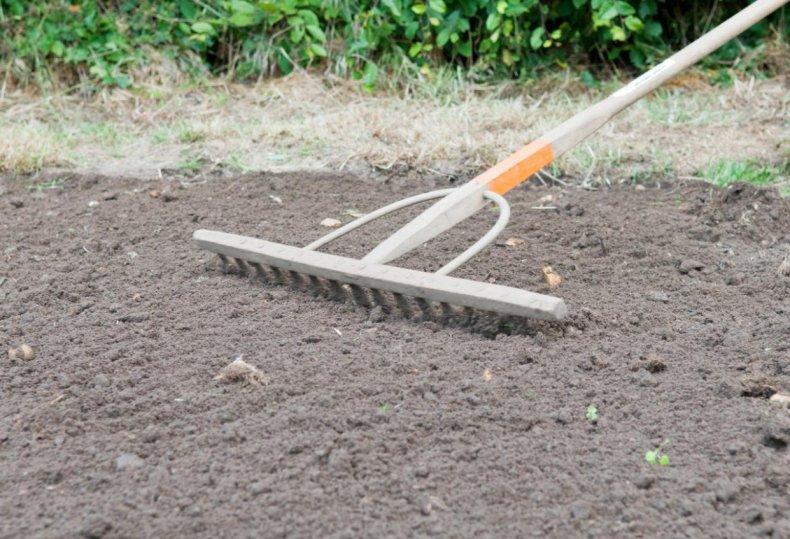 Почва под укладку газона
