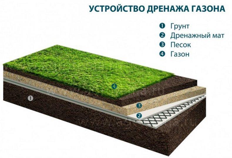Устройство дренажа газона