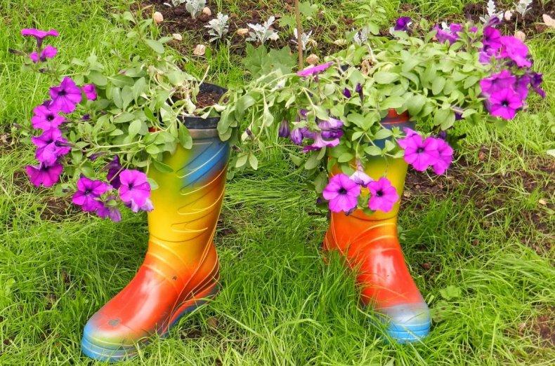 Цветник в ботинках