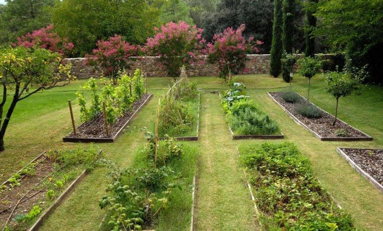 Сад и огород на участке