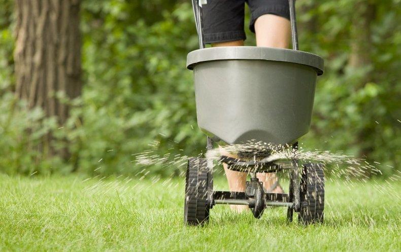 Нормы внесения подкормок для газона