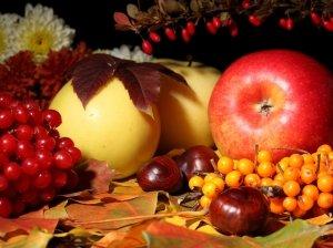 Яблоня уход осенью подготовка к зиме
