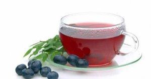 вредный, голубика, ягод голубики, горячей воды, свойства голубики, течение минут