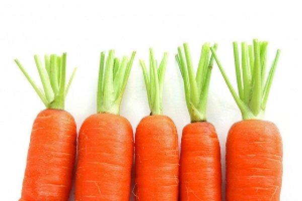 Самые лучшие сорта моркови для сибири