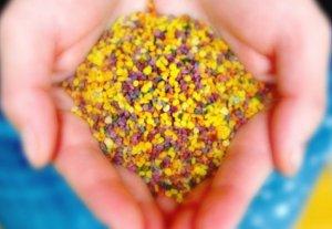 Пчелиная пыльца как пищевая добавка