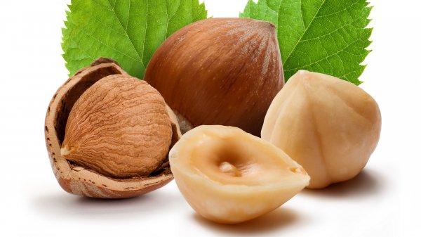 Лучшие сорта ореха фундук
