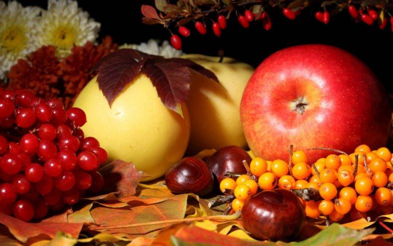 Яблоки калина