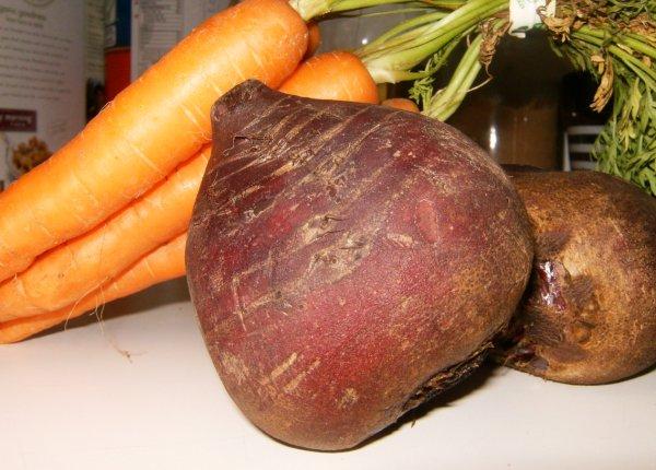 Уборка моркови и свеклы сроки в сибири
