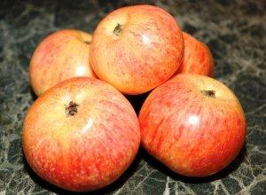 Конфетное сорт яблони