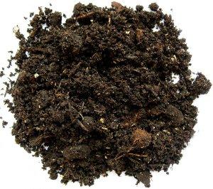 Дерновая почва