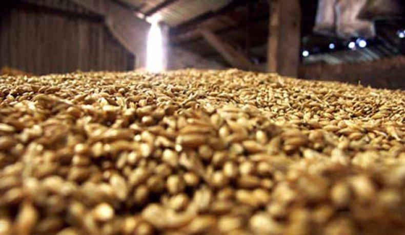 русагротранс, снизить, прогноз, экспорт, зерно
