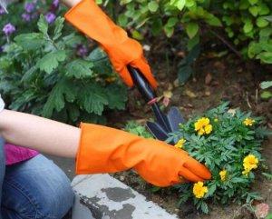 Средства защиты на огороде