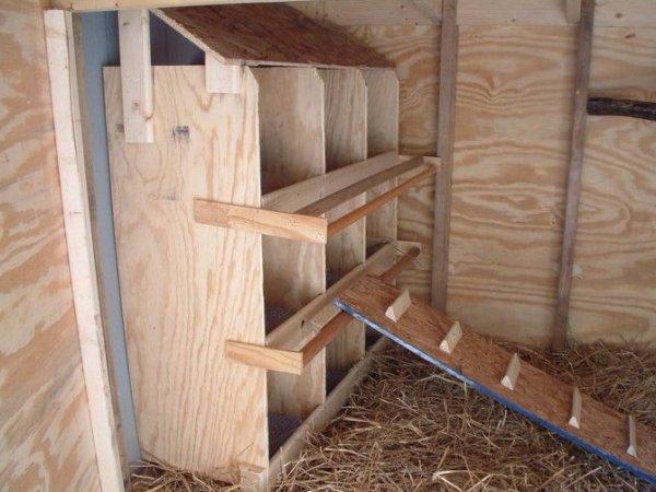Гнездо для несушек с яйцесбоником своими руками 13