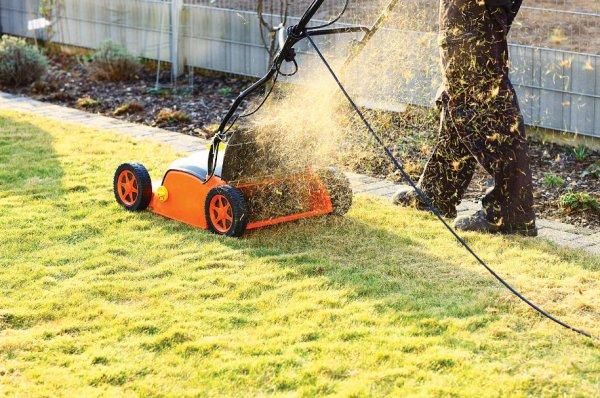 выбор газонокосилки для дачи