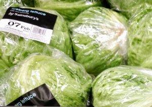 Выбор качественного салата