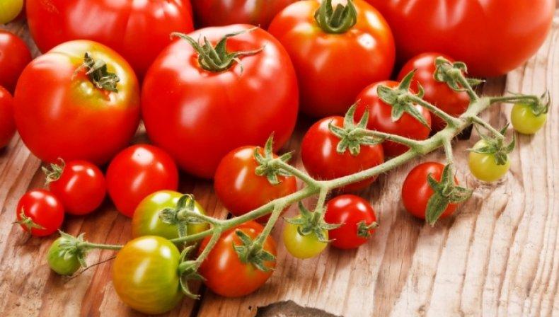 Борная кислота для помидоров опрыскивание томатов от болезней