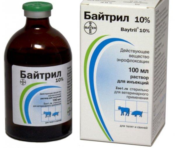 Витамины для индюшат — схема пропойки индюшат от болезней