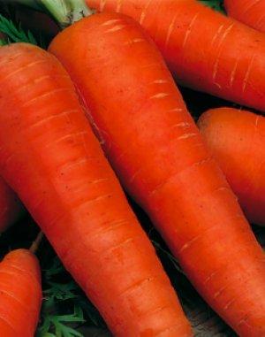 Сок моркови очень вкусный и полезный