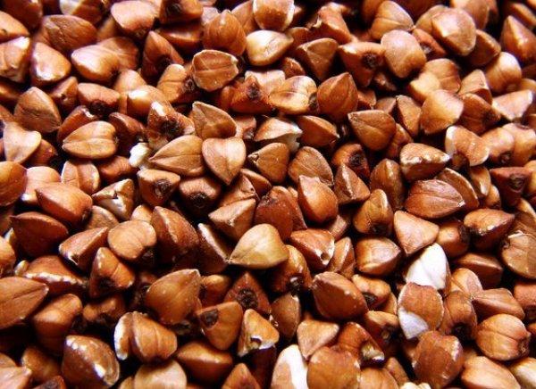 Как называется самый крупный сорт гречневой крупы? Виды и сорта гречки