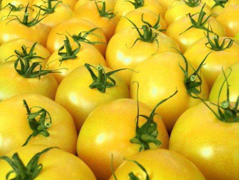 факт, томат, помидор, ягода, овощ
