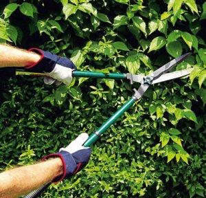 садовый, ножницы, помощник, стрижка, куст
