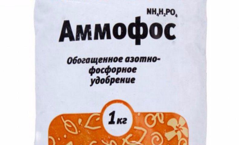 Аммофос описание и применение минерального удобрения