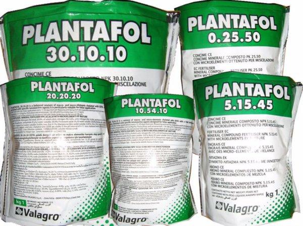 плантофит состав и применение