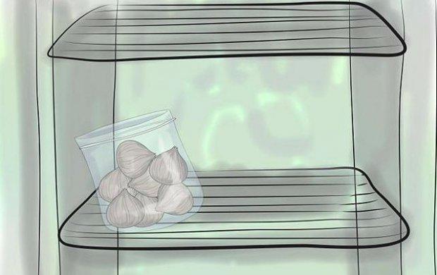 Обработка гладиолусов перед хранением