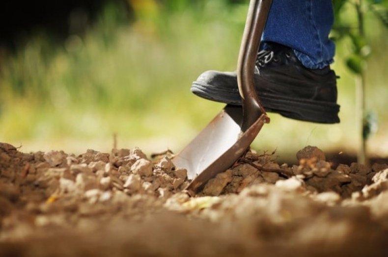 Вскапывание почвы