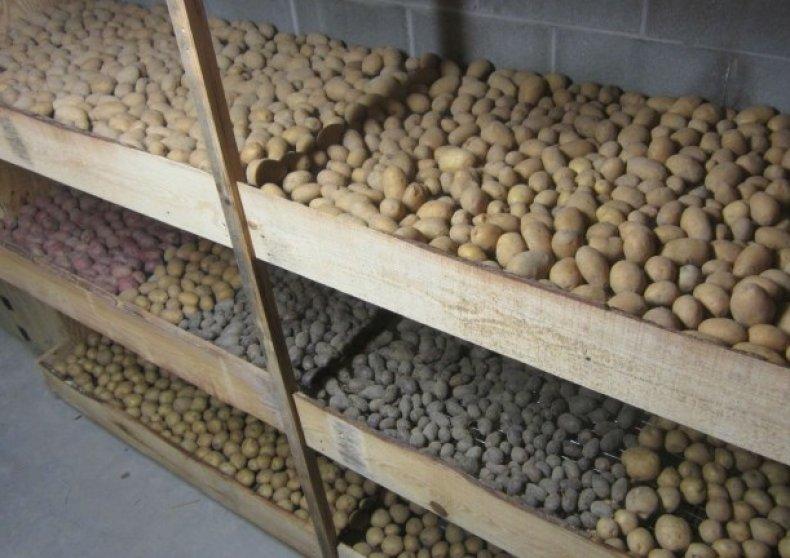 хранение, овощ, хранить, картофель