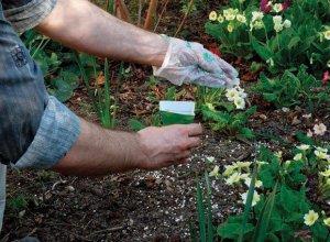 Удобрение растений
