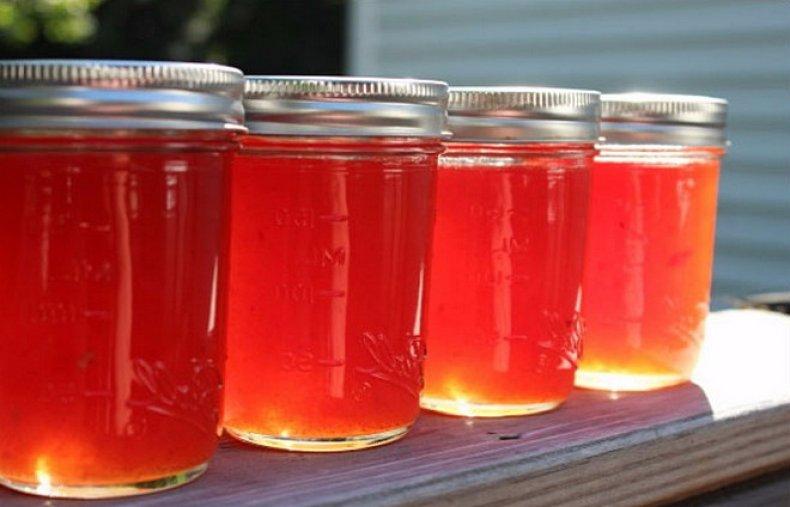Арбузный мед: польза и особенности приготовления