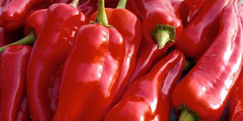 перец, богатырь, описание, выращивание, сладкий, высадки перца
