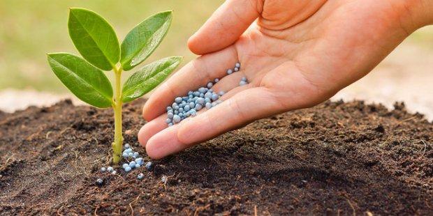 Инсектициды для почвы