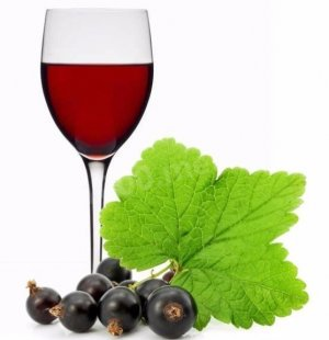 Приготовления вина в домашних условиях из черной смородины 863