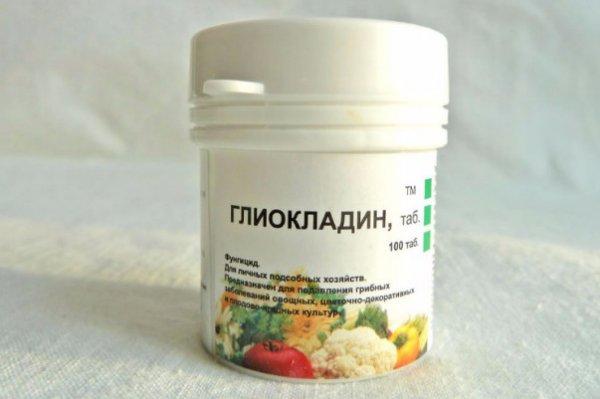 Биофунгициды для рассады (Глиокладин) - применение и отзывы