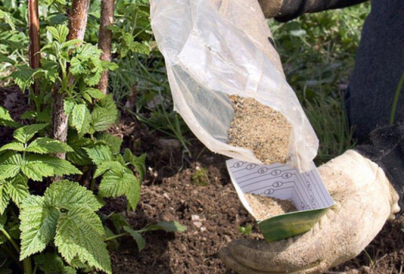 удобрения малины