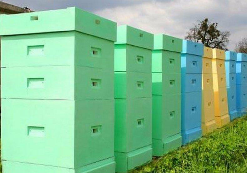 улей, дадана, конструкция, пчела, собственными руками