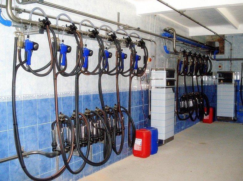 Доильные аппараты на ферме