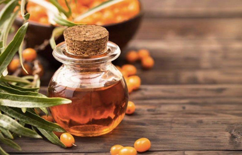 В чем польза облепихи описание, калорийность, состав и противопоказания ягод