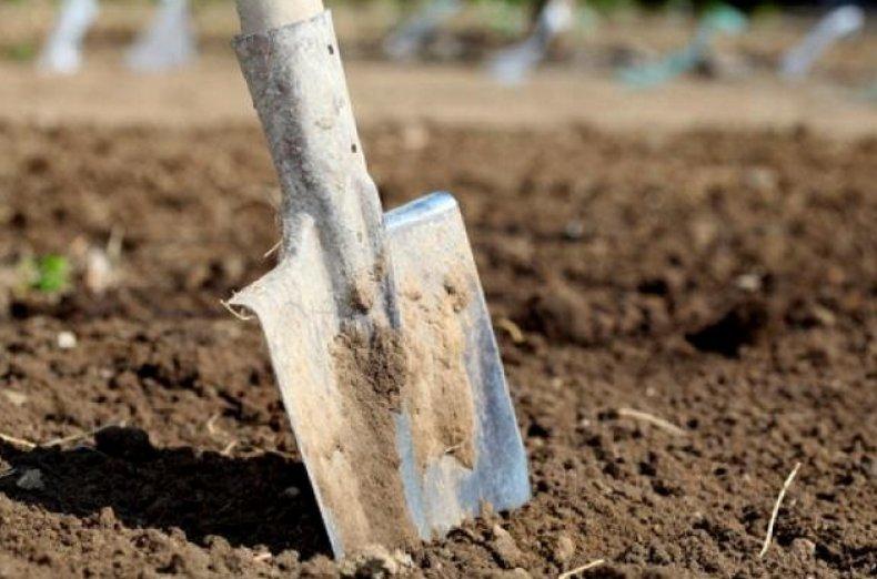 Обычная лопата