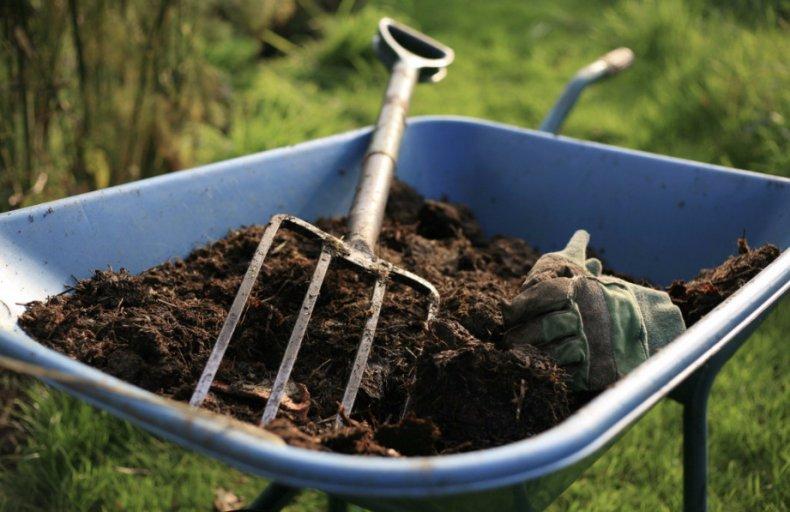 можно ли удобрять огород собачьим калом