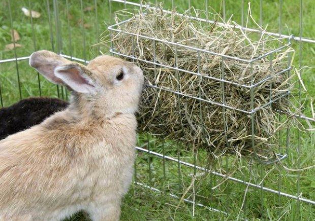 силос для кроликов своими термобелье
